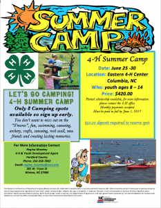 Cover photo for 4-H Summer Camp 2017