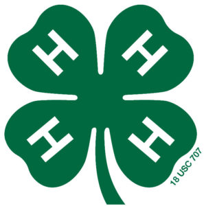 Cover photo for 4-H Media Team