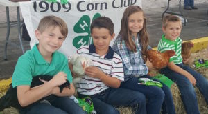 Cover photo for 1st Annual Hertford Co. 4-H Chicken & Rabbit Show