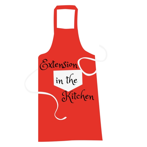 Extension in the Kitchen logo image